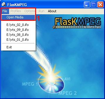 FlasK's startup window